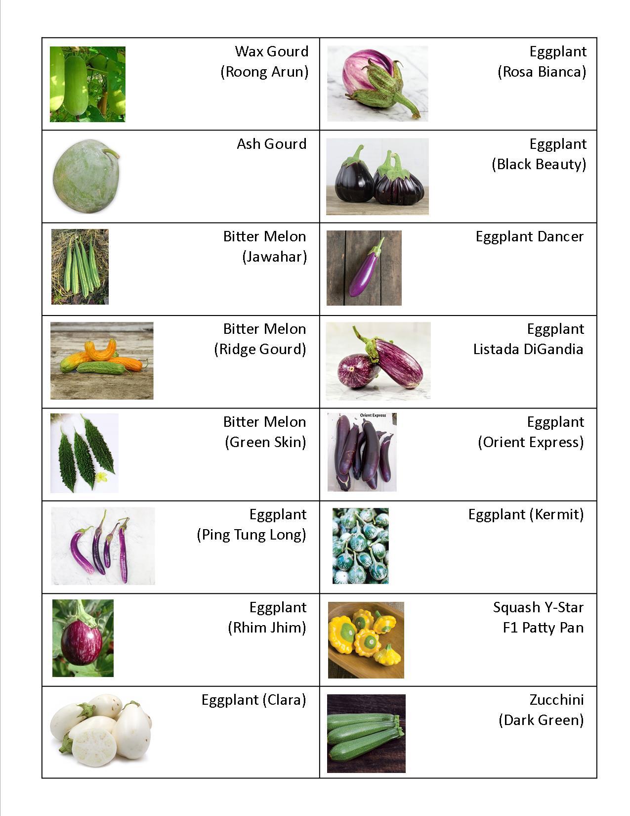 Gourd, Eggplants, Squash