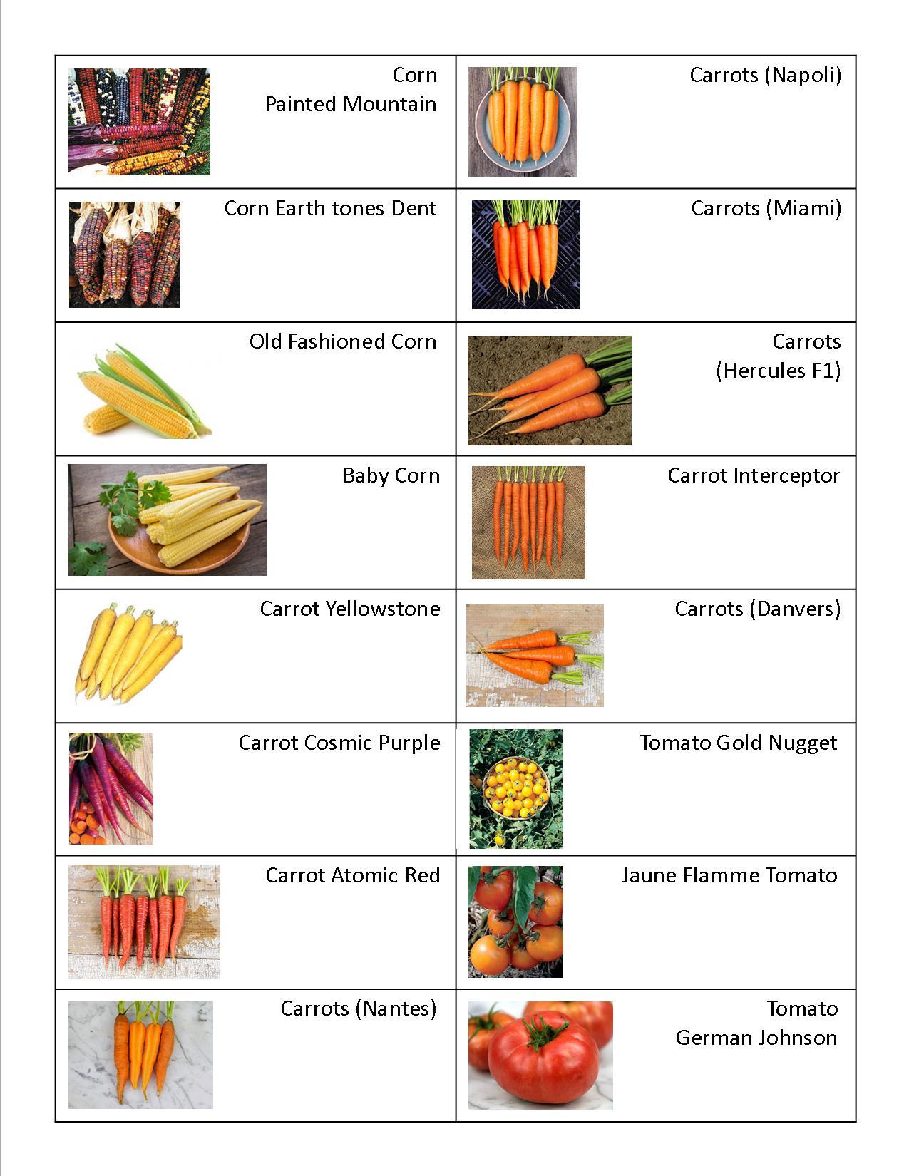 Carrot, Tomato