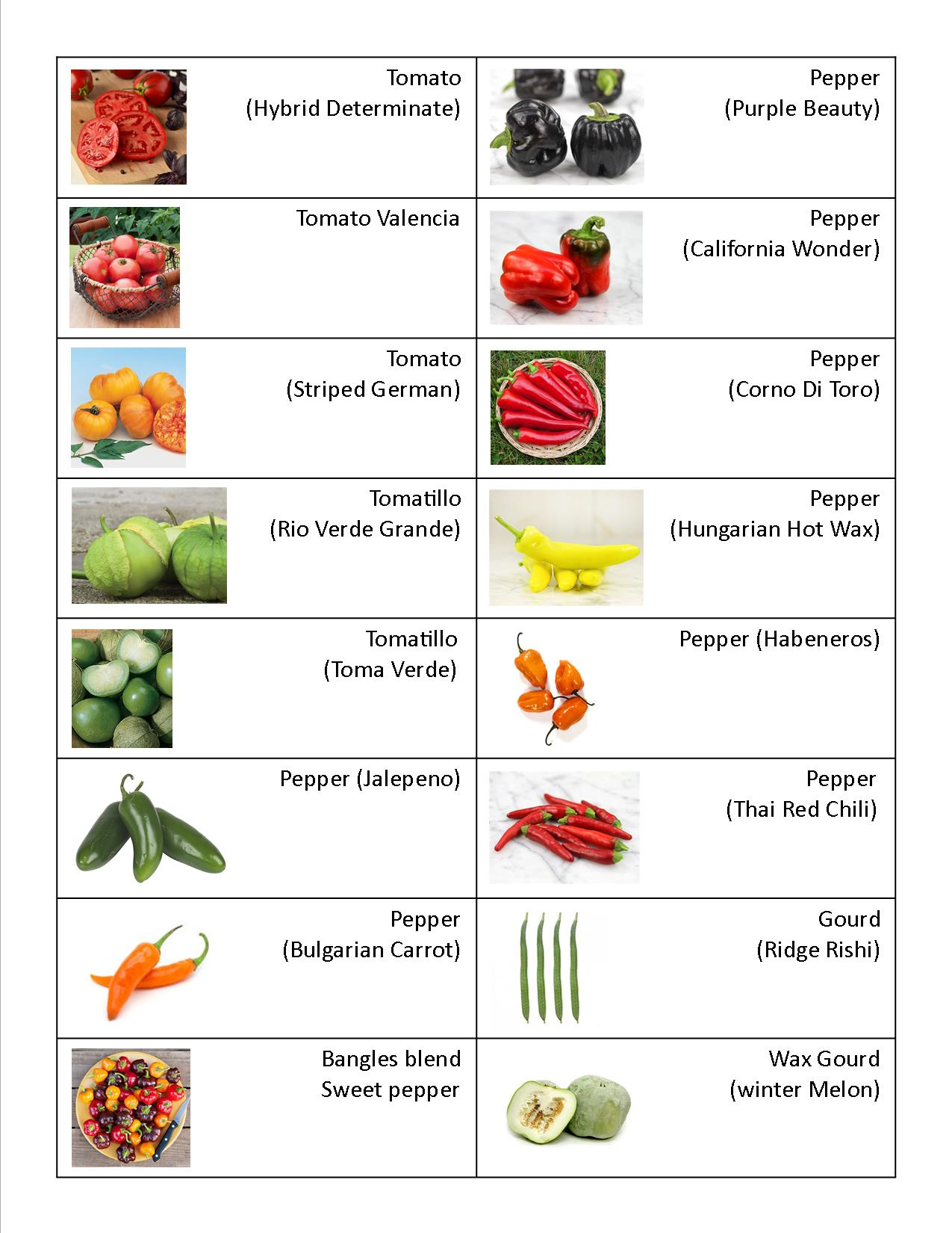 Vegetable Varitey Spreadsheet 9