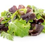 Spring Lettuce Mix